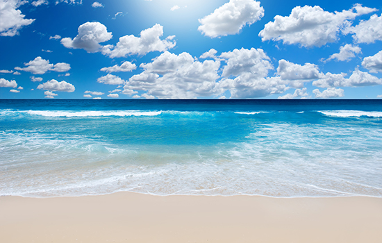 It's not just our sun, sand and surf attracting the world's high-net-worth individuals.