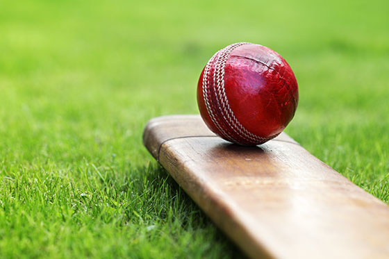 If you are travelling to Australia and New Zealand between 26 January - 5 April 2015 for the ICC Cricket World Cup 2015​, you only need to apply for an Australian visa.