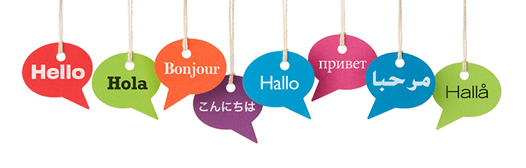 New languages improve brain fitness